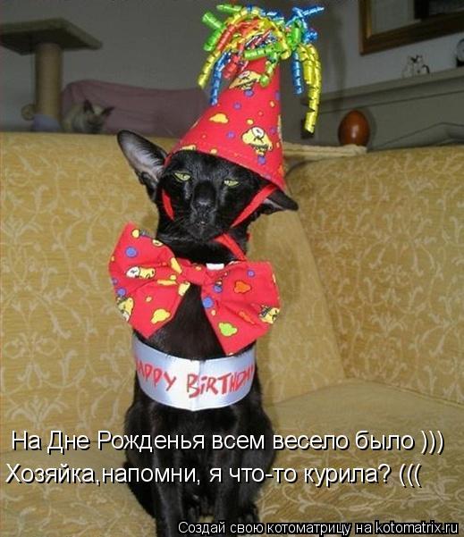Котоматрица: На Дне Рожденья всем весело было ))) Хозяйка,напомни, я что-то курила? (((