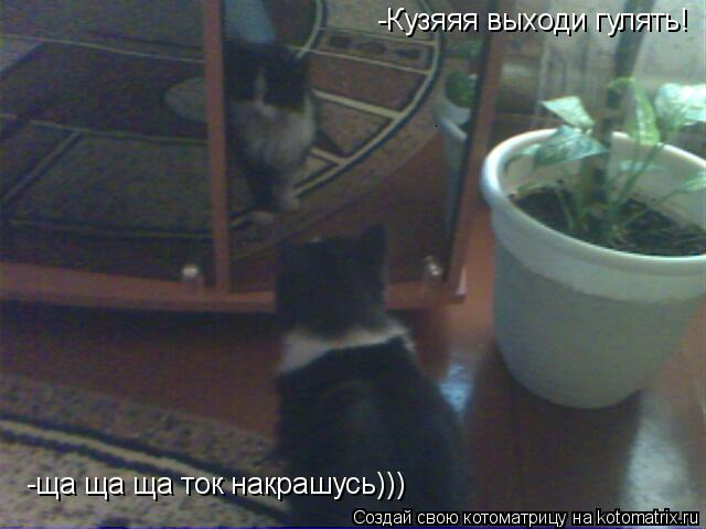 Котоматрица: -Кузяяя выходи гулять! -ща ща ща ток накрашусь)))