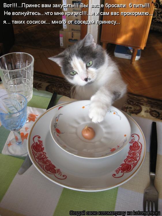 Котоматрица: Вот!!!...Принес вам закусить!!! Вы  ваще бросали  б пить!!! Не волнуйтесь...что мне кризис!!!...я и сам вас прокормлю... я... таких сосисок... много о