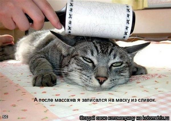 Котоматрица: А после массажа я записался на маску из сливок.