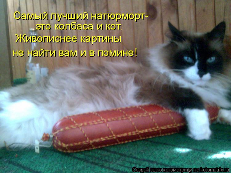 Котоматрица: Самый лучший натюрморт- это колбаса и кот. Живописнее картины  не найти вам и в помине!