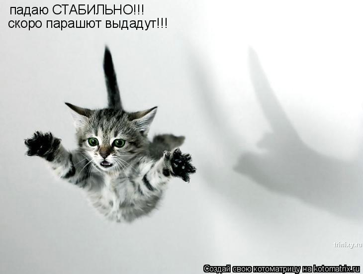 Котоматрица: падаю СТАБИЛЬНО!!! скоро парашют выдадут!!!