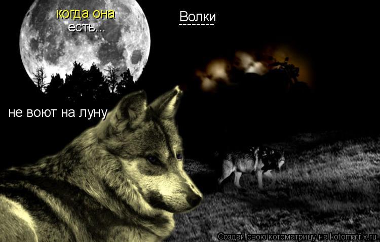 Котоматрица: Волки не воют на луну когда она есть... --------