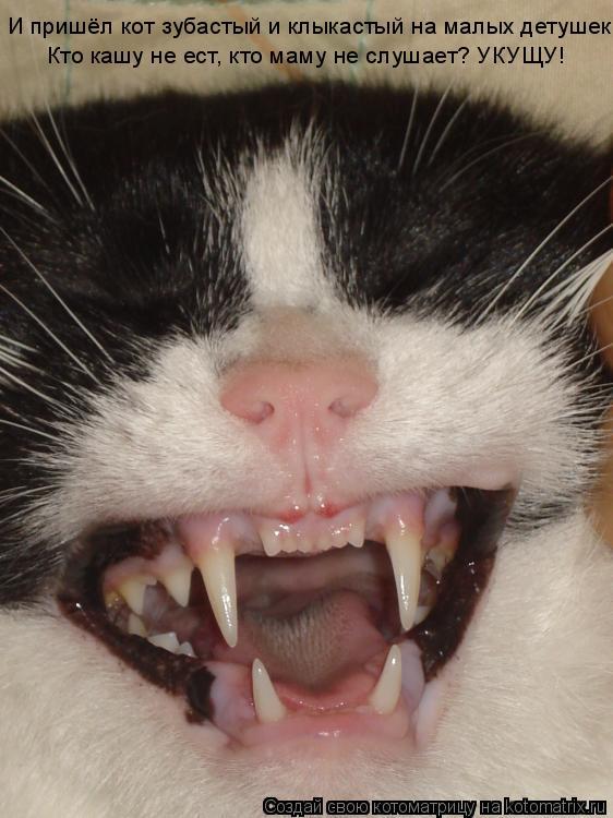 Котоматрица: И пришёл кот зубастый и клыкастый на малых детушек!  Кто кашу не ест, кто маму не слушает? УКУЩУ!