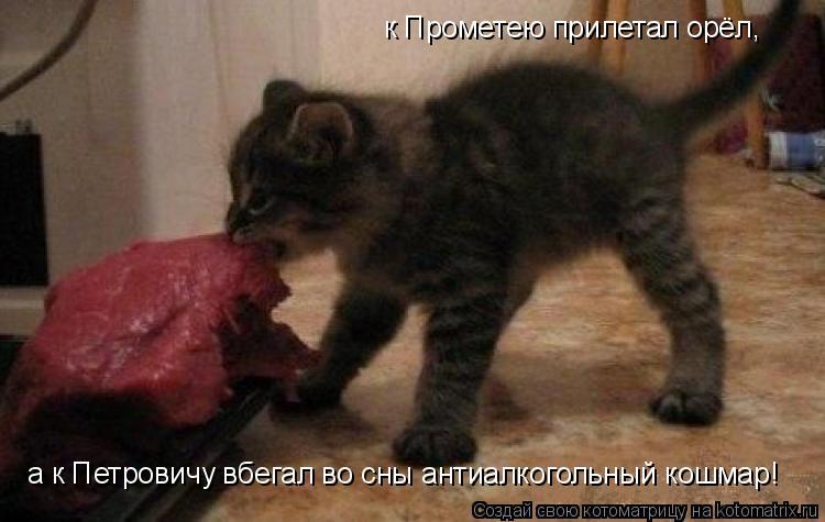 Котоматрица: к Прометею прилетал орёл, а к Петровичу вбегал во сны антиалкогольный кошмар!