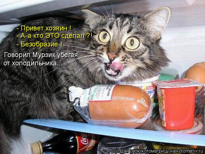 Котоматрица: - Привет хозяин !  - А-а кто ЭТО сделал ?! - Безобразие !  Говорил Мурзик убегая  от холодильника...