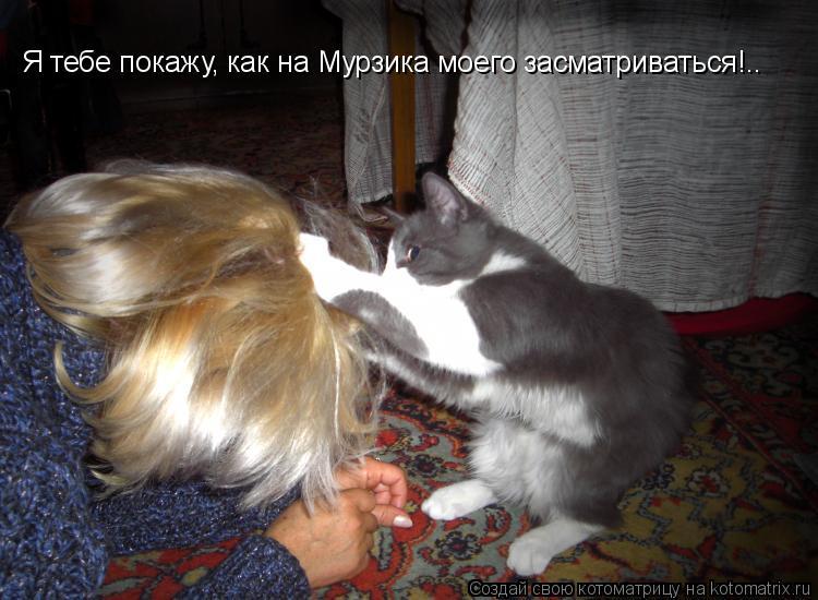 Котоматрица: Я тебе покажу, как на Мурзика моего засматриваться!..