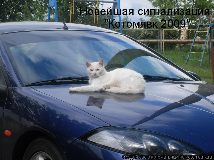 "Котоматрица: Новейшая сигнализация   ""Котомявк 2009"""