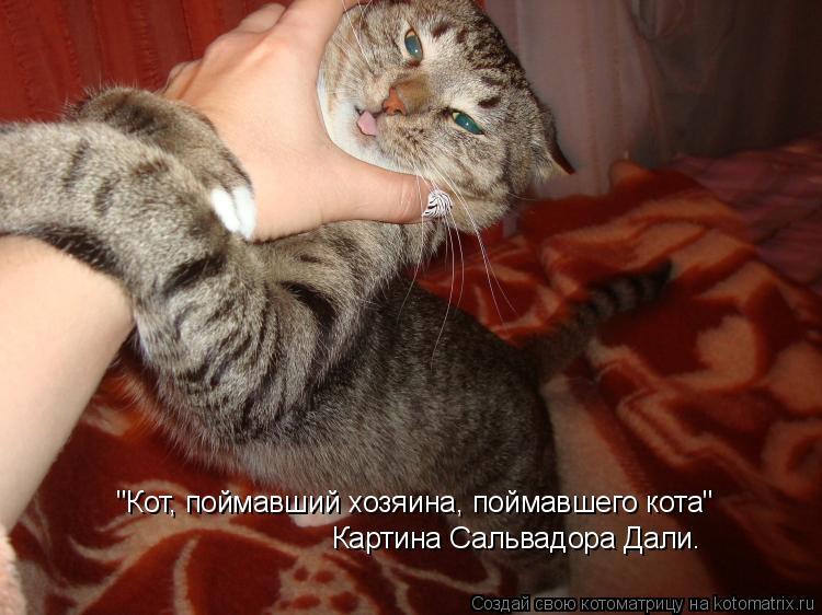 """Котоматрица: """"Кот, поймавший хозяина, поймавшего кота""""  Картина Сальвадора Дали."""