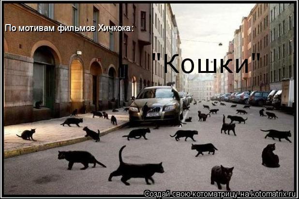 "Котоматрица: По мотивам фильмов Хичкока: ""Кошки"""