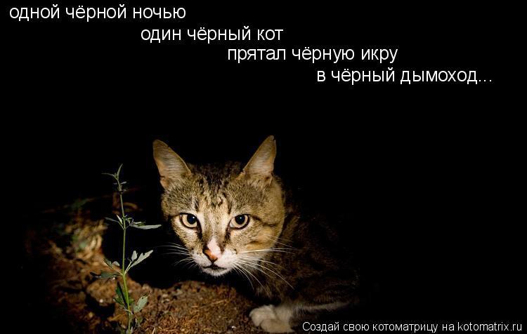 Котоматрица: одной чёрной ночью один чёрный кот прятал чёрную икру в чёрный дымоход...