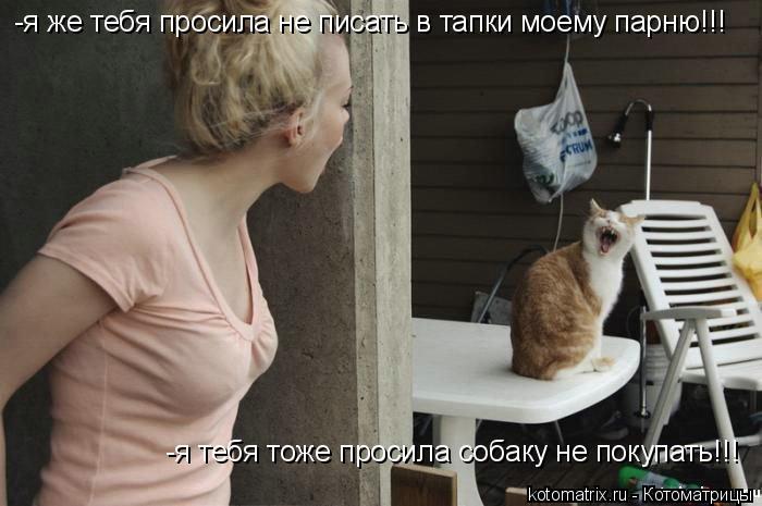 Котоматрица: -я же тебя просила не писать в тапки моему парню!!! -я тебя тоже просила собаку не покупать!!!