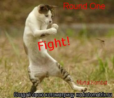 Котоматрица: Round One Fight! Mortal Kombat