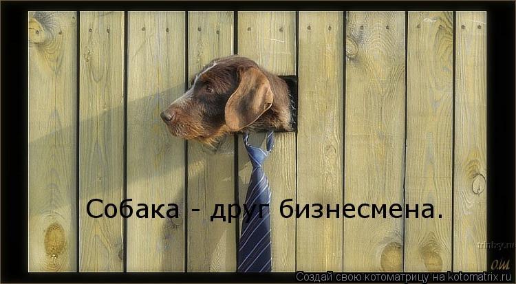 Котоматрица: Собака - друг бизнесмена.