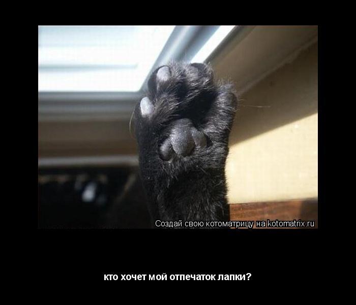 Котоматрица: моя лапуля!! кто хочет мой отпечаток лапки?