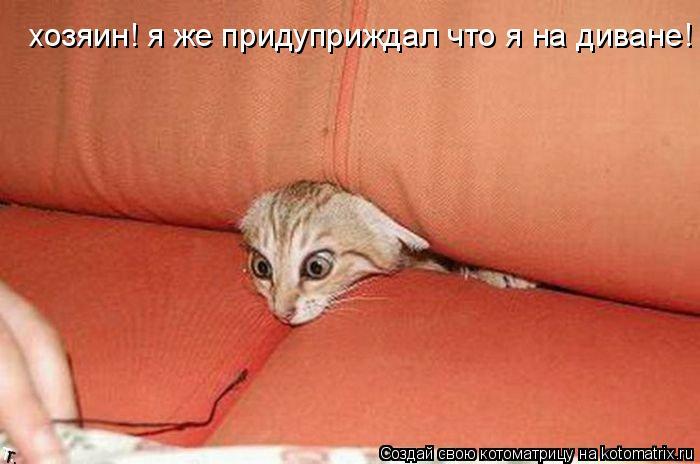 Котоматрица: хозяин! я же придуприждал что я на диване!