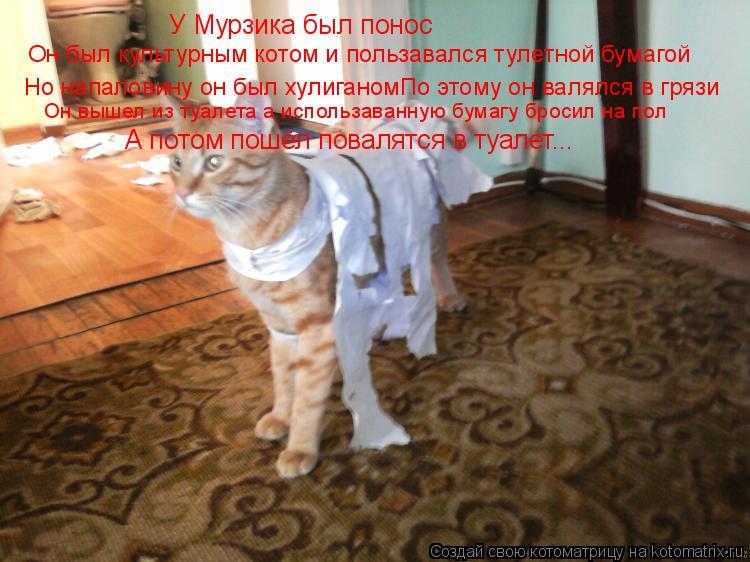 Котоматрица: У Мурзика был понос Он был культурным котом и пользавался тулетной бумагой Но напаловину он был хулиганомПо этому он валялся в грязи Он выш