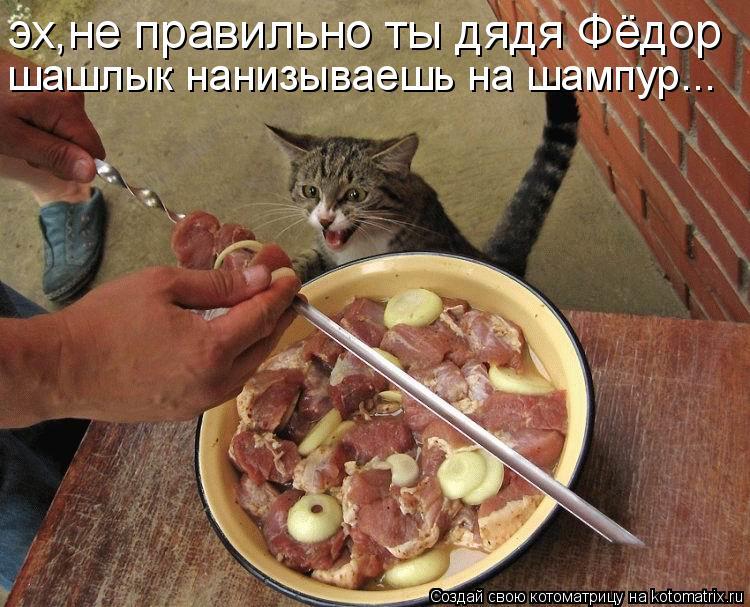Котоматрица: эх,не правильно ты дядя Фёдор  шашлык нанизываешь на шампур...