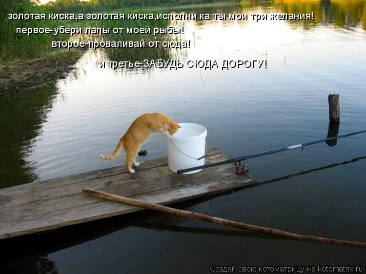 Котоматрица: золотая киска,а золотая киска,исполни ка ты мои три желания! первое-убери лапы от моей рыбы! второе-проваливай от сюда!  и третье-ЗАБУДЬ СЮДА