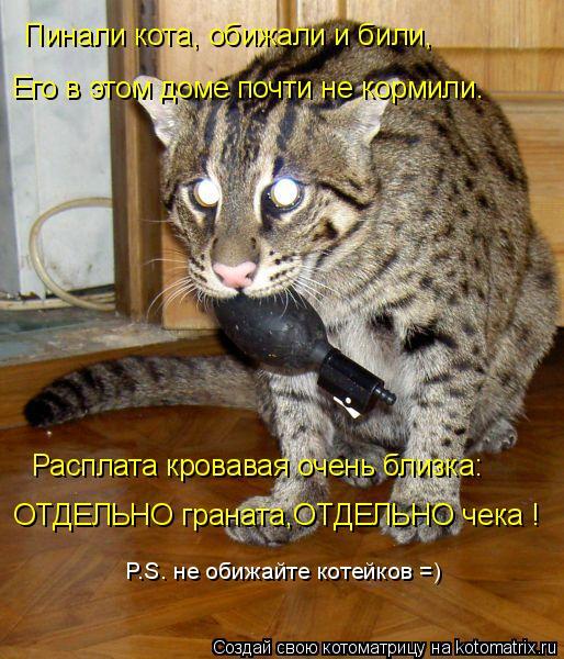 Котоматрица: Пинали кота, обижали и били, Расплата кровавая очень близка: ОТДЕЛЬНО граната,ОТДЕЛЬНО чека ! P.S. не обижайте котейков =) Его в этом доме почти