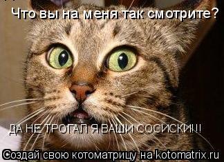 Котоматрица: Что вы на меня так смотрите? ДА НЕ ТРОГАЛ Я ВАШИ СОСИСКИ!!!
