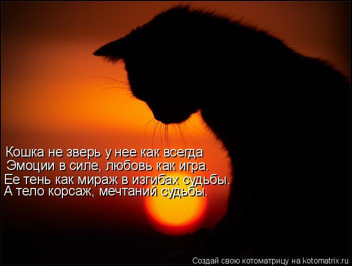 Котоматрица: Кошка не зверь у нее как всегда Эмоции в силе, любовь как игра. Ее тень как мираж в изгибах судьбы. А тело корсаж, мечтаний судьбы.