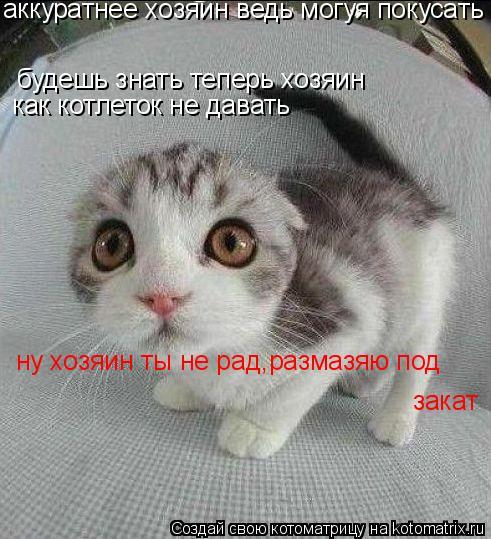 Котоматрица: будешь знать теперь хозяин  как котлеток не давать ну хозяин ты не рад,размазяю под  аккуратнее хозяин ведь могуя покусать закат