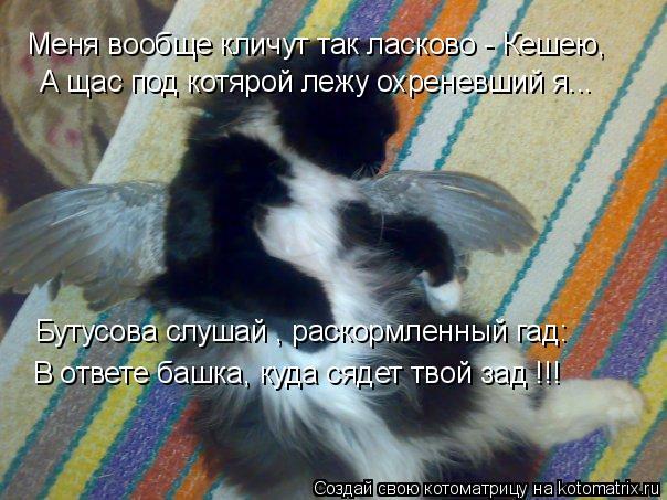 Котоматрица: Меня вообще кличут так ласково - Кешею, А щас под котярой лежу охреневший я... Бутусова слушай , раскормленный гад: В ответе башка, куда сядет