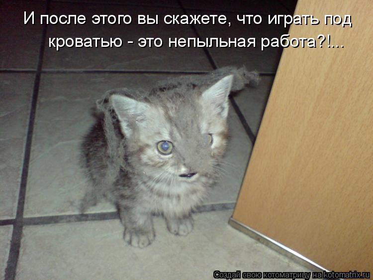 Котоматрица: И после этого вы скажете, что играть под  кроватью - это непыльная работа?!...