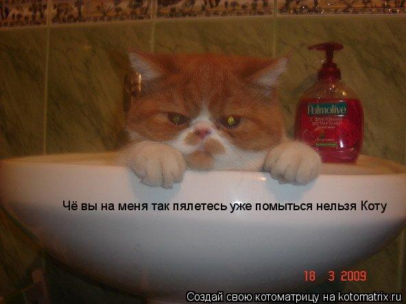 Котоматрица: Чё вы на меня так пялетесь уже помыться нельзя Коту
