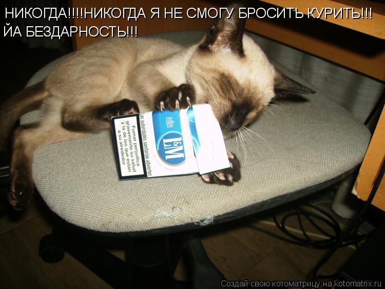 Котоматрица: НИКОГДА!!!!НИКОГДА Я НЕ СМОГУ БРОСИТЬ КУРИТЬ!!! ЙА БЕЗДАРНОСТЬ!!!