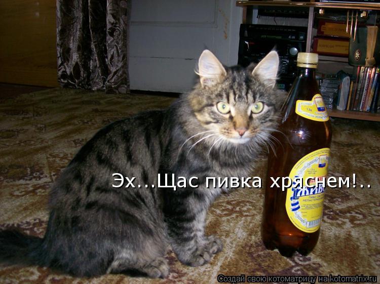 Котоматрица: Эх...Щас пивка хряснем!..