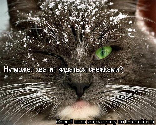 Котоматрица: Ну может хватит кидаться снежками?