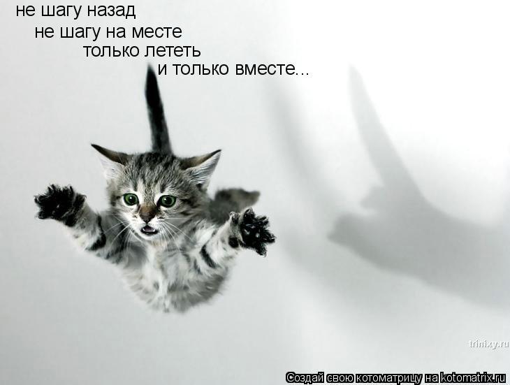 Котоматрица: не шагу назад не шагу на месте только лететь и только вместе...
