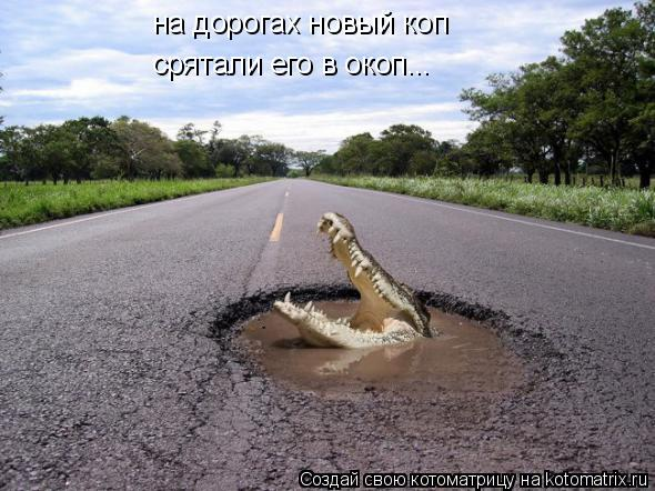 Котоматрица: на дорогах новый коп срятали его в окоп...