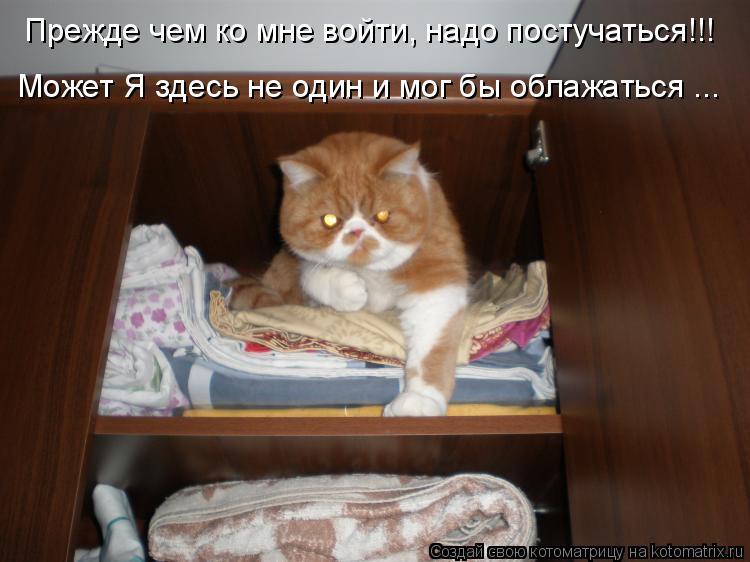 Котоматрица: Прежде чем ко мне войти, надо постучаться!!! Может Я здесь не один и мог бы облажаться ...