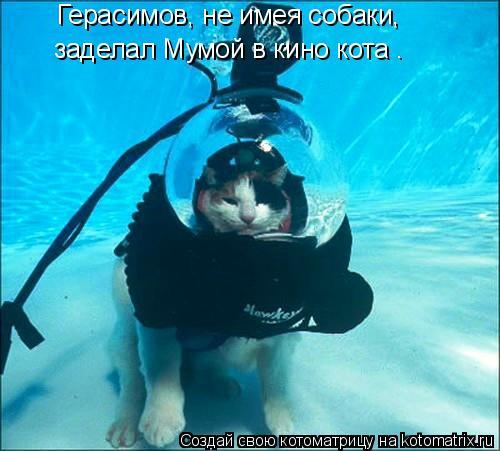 Котоматрица: Герасимов, не имея собаки,  заделал Мумой в кино кота .