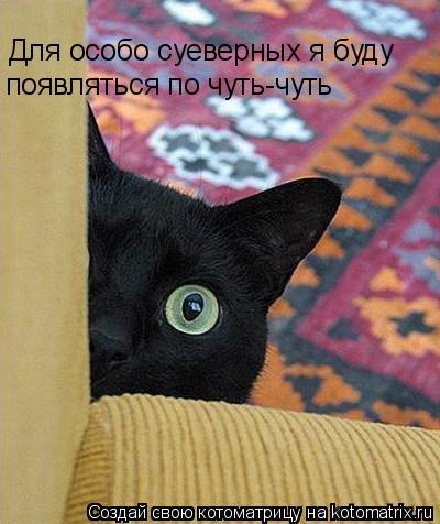 Котоматрица: Для особо суеверных я буду появляться по чуть-чуть