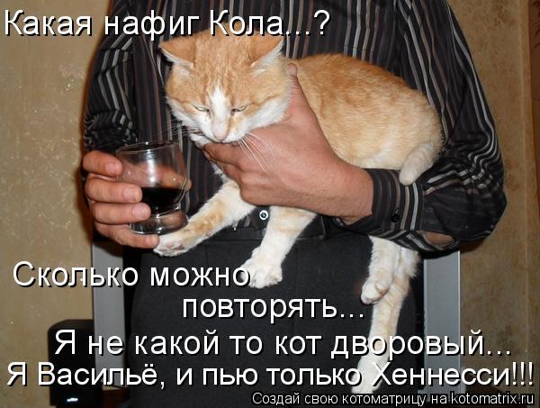 Котоматрица: Сколько можно повторять... Я не какой то кот дворовый... Какая нафиг Кола...? Я Васильё, и пью только Хеннесси!!!