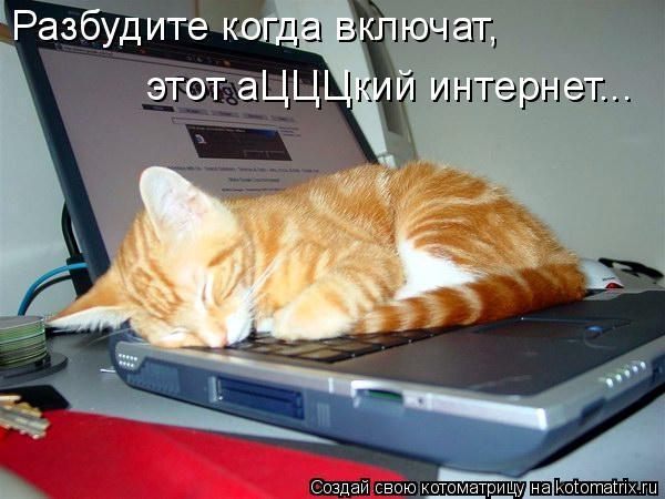 Котоматрица: Разбудите когда включат, этот аЦЦЦкий интернет...
