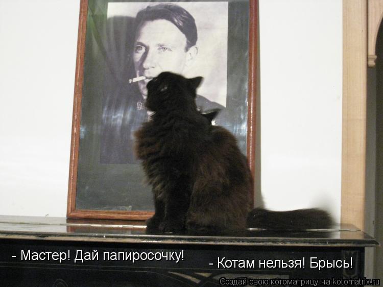 Котоматрица: - Мастер! Дай папиросочку!  - Котам нельзя! Брысь!
