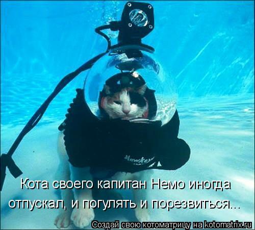 Котоматрица: Кота своего капитан Немо иногда  отпускал, и погулять и порезвиться...