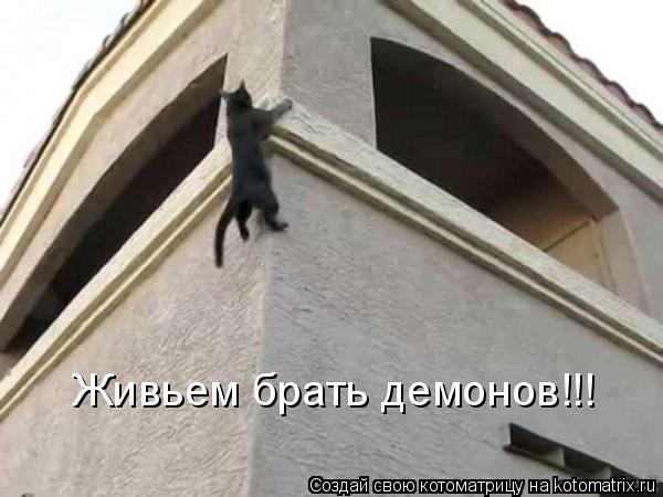 Котоматрица: Живьем брать демонов!!!