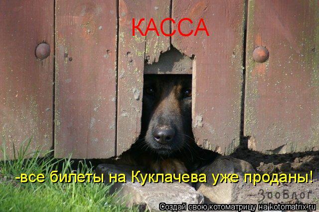 Котоматрица: КАССА -все билеты на Куклачева уже проданы!