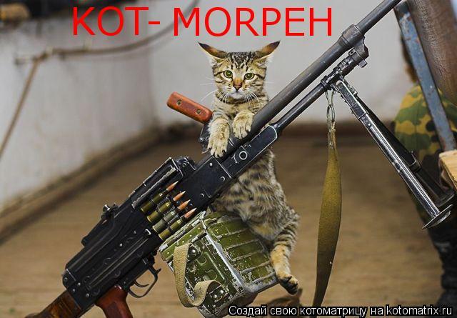 Котоматрица: KOT- MORPEH