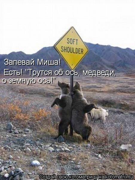 """Котоматрица: Запевай Миша! Есть! """"Трутся об ось, медведи,  о земную ось!"""""""