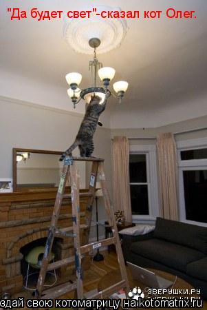 "Котоматрица: ""Да будет свет""-сказал кот Олег."