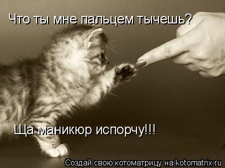 Котоматрица: Что ты мне пальцем тычешь? Ща маникюр испорчу!!!