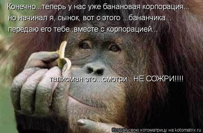 Котоматрица: Конечно...теперь у нас уже банановая корпорация... но начинал я, сынок, вот с этого ...бананчика... передаю его тебе..вместе с корпорацией... тали