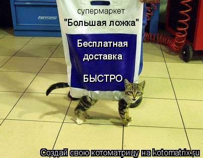 """Котоматрица: супермаркет  """"Большая ложка"""" Бесплатная  доставка БЫСТРО"""